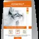 Attentiv+® test de santé analyse du chat au domicile