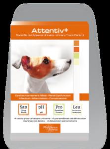 Attentiv+® test de sante analyse urinaire au domicile pour chien