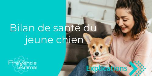 consultation vétérinaire test pour chien